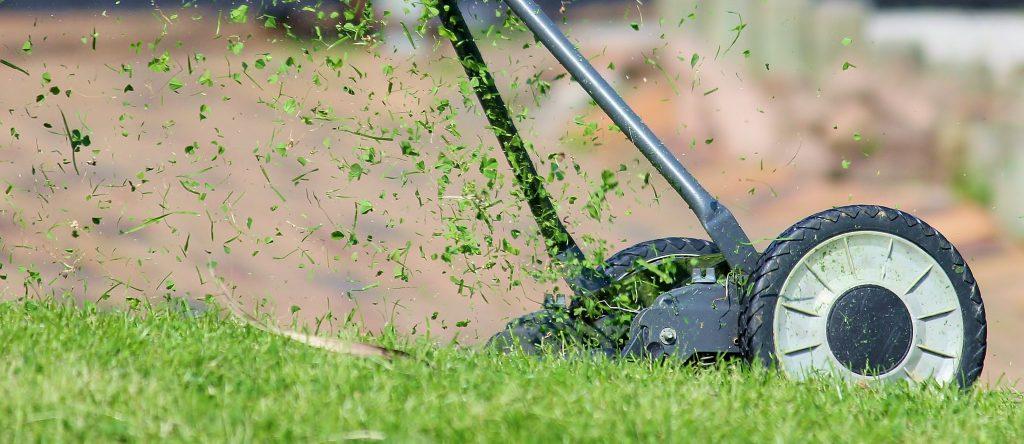 Gartengestaltung Natur Gärtnermeister Michael Rickert - Ihr Gärtner für Bad Sassendorf und Umgebung. Gartenpflege Baumpflege Strauchschnitt Gartenbau Rasenmäher Natur